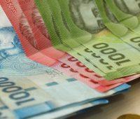 Los montos y beneficios sociales que entregará el IPS este 2018
